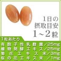 seedcoms(シードコムス) 届く!有胞子性乳酸菌の商品画像2