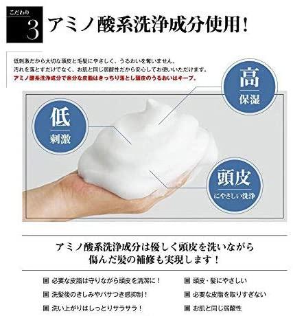 &GINO(アンドジーノ)頭皮ケア プレミアムブラックシャンプーの商品画像14