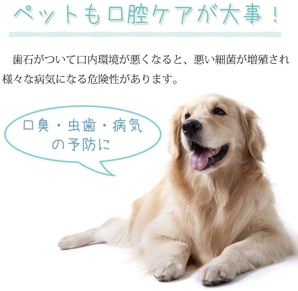 KIMINO ペット用歯ブラシの商品画像2