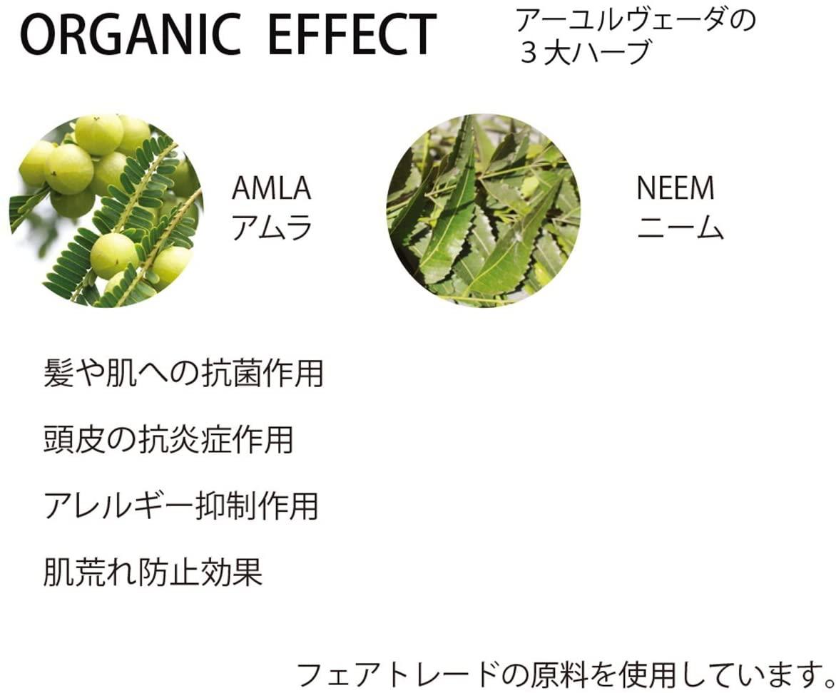 Beauty Sustainability(ビューティーサステナビリティー)使いやすいジェルタイプのオーガニックドライシャンプー ANの商品画像5