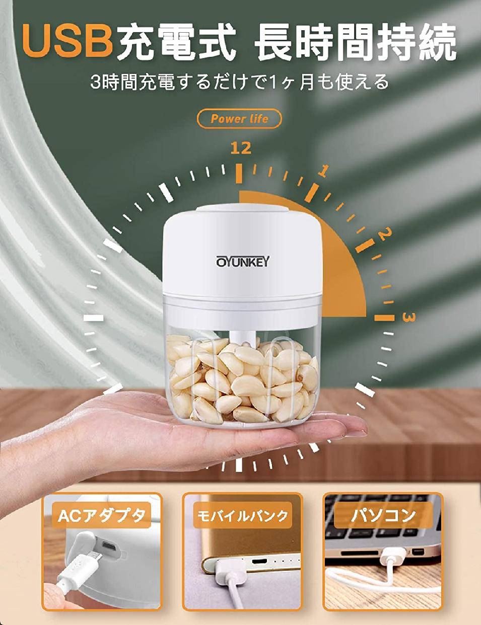 OYUNKEY(オーワイユーキー)みじん切り器 電動 チョッパーの商品画像8