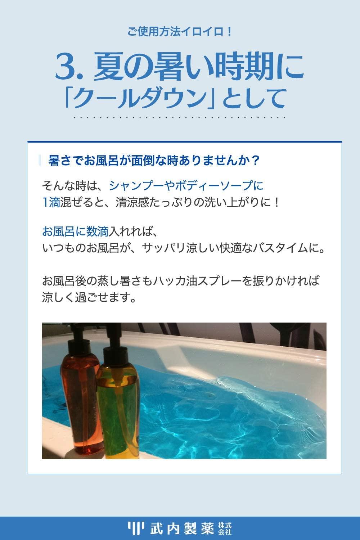 武内製薬(タケウチセイヤク) ハッカ油の商品画像6
