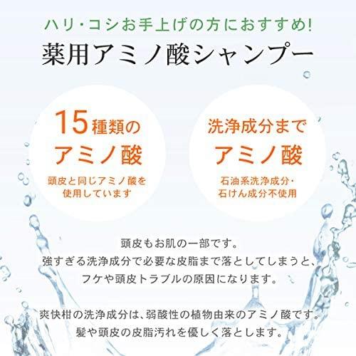 爽快柑(Sou Kai Kan) 薬用アミノ酸シャンプーの商品画像4