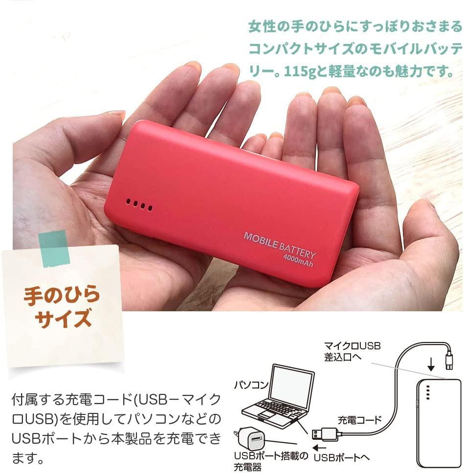 テレホンリース USBモバイルバッテリー テレホンリース RLI040M2A01BKの商品画像6