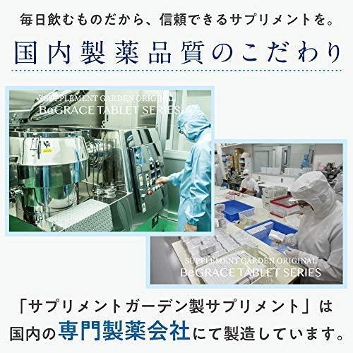 SUPPLEMENT GARDEN(サプリメントガーデン) EC-12乳酸菌&ラクトフェリン粒の商品画像8