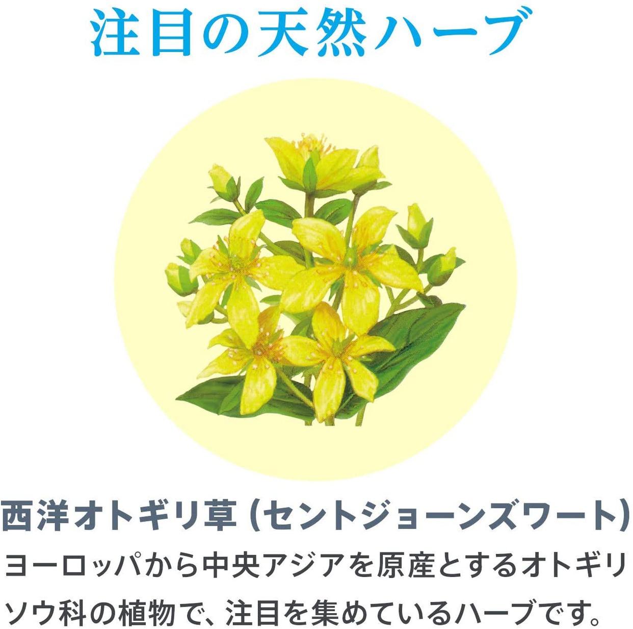 佐藤製薬(sato) セントジョーンズワートの商品画像4
