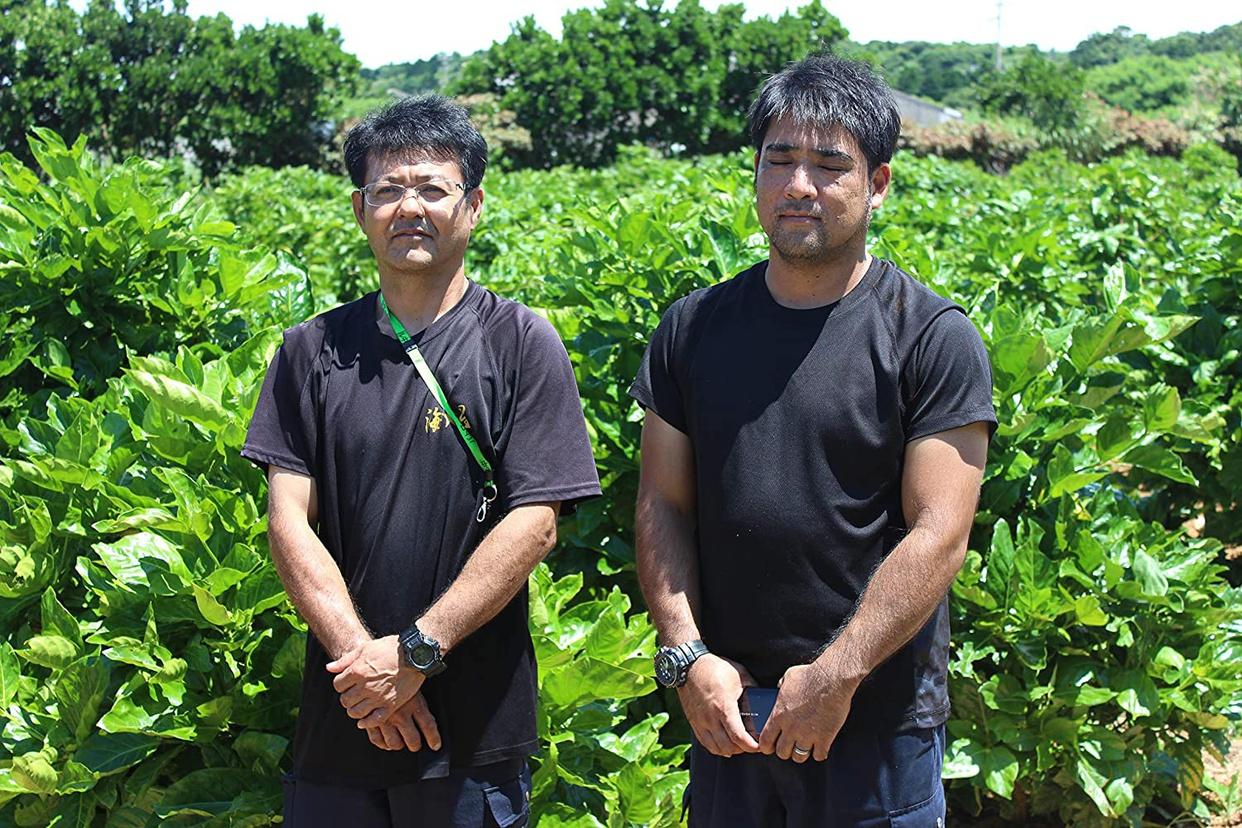 健康の達人エム・ディー・エム 沖縄県産 ノニジュースの商品画像3