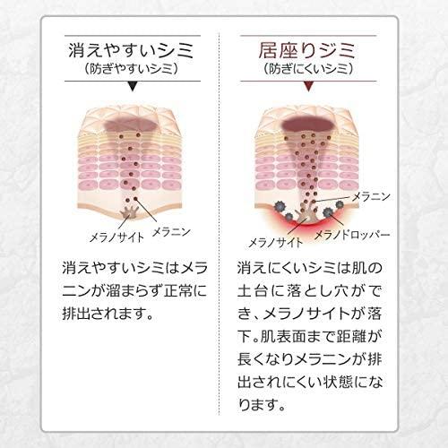 FANCL(ファンケル)新ホワイトニング 化粧液Ⅱ しっとりの商品画像4