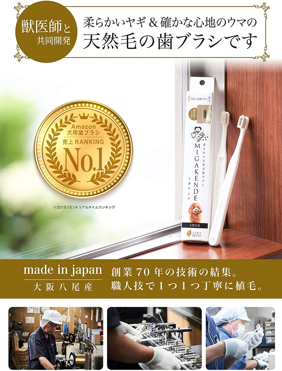 MIGAKENDE(ミガケンデ) 柔らかい天然毛歯ブラシの商品画像2
