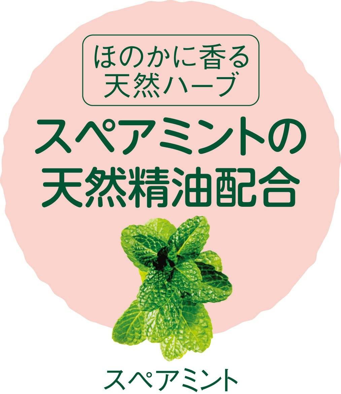 arau.(アラウ.)洗たく槽クリーナーの商品画像4
