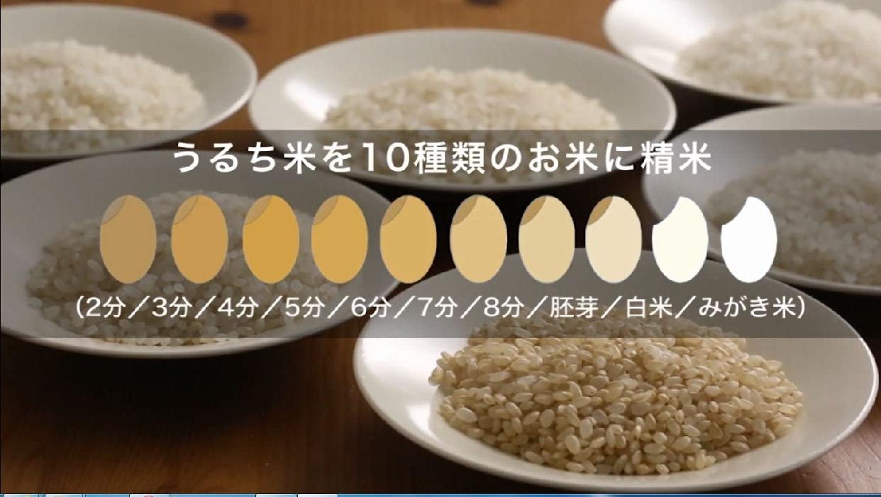 山本電気(ヤマモトデンキ)匠味米 MB-RC52B ブラックの商品画像2