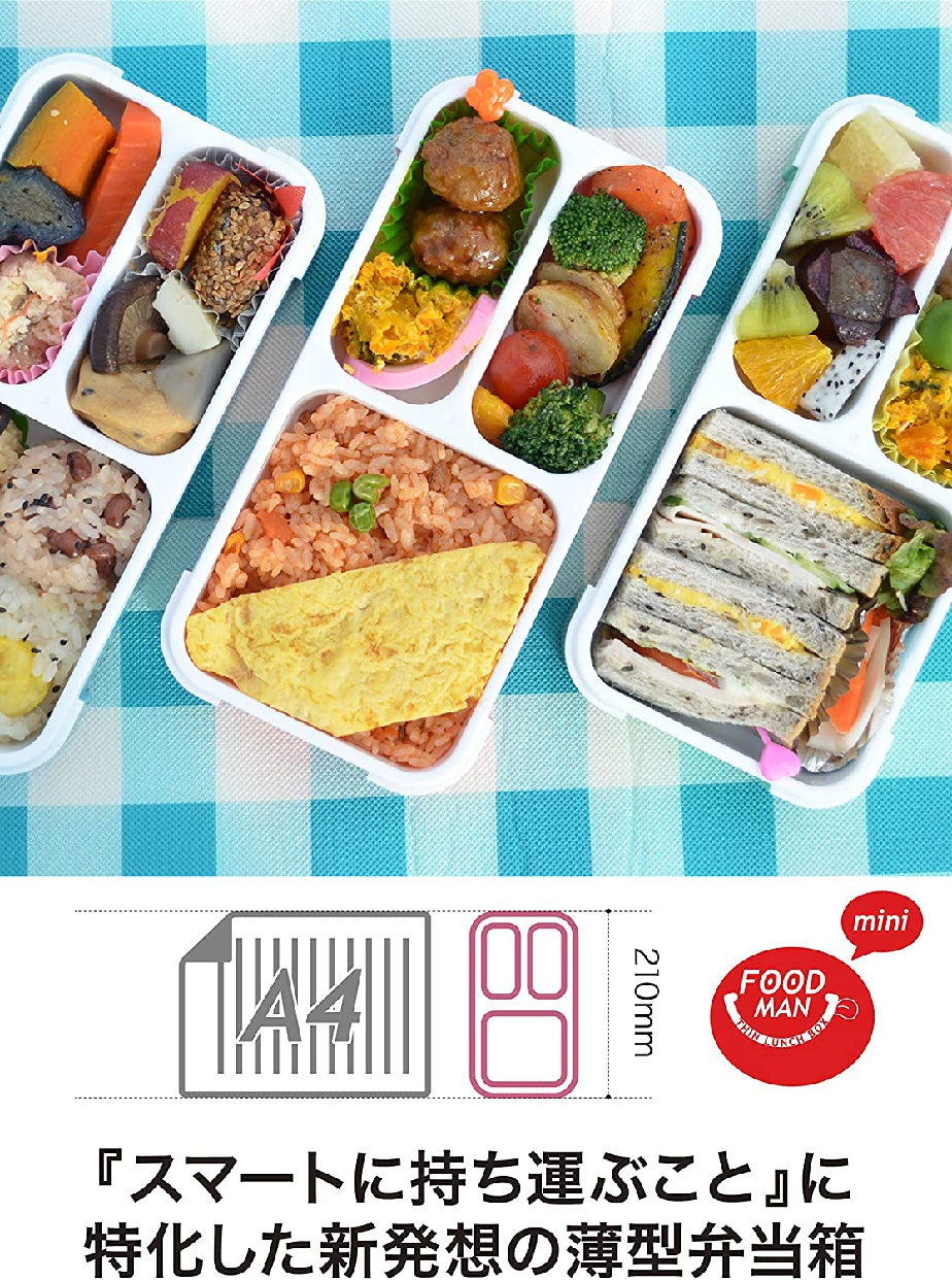 CB JAPAN(シービージャパン) 薄型弁当箱 フードマン ミニの商品画像2