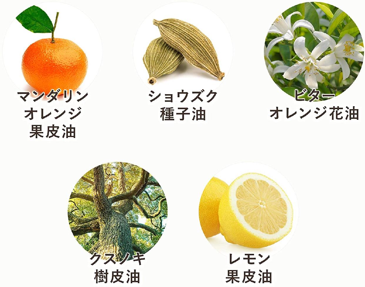 N organic(エヌオーガニック) モイスチュア&バランシング フォームの商品画像4