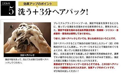 &GINO(アンドジーノ)頭皮ケア プレミアムブラックシャンプーの商品画像16