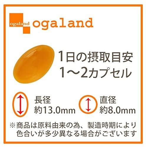 ogaland(オーガランド) プラセンタの商品画像2