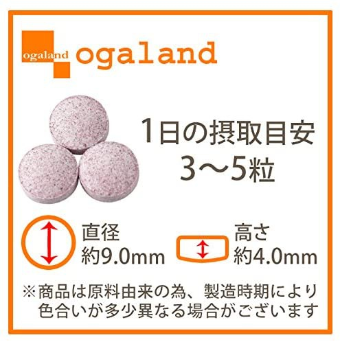ogaland(オーガランド) ブルーベリーの商品画像2