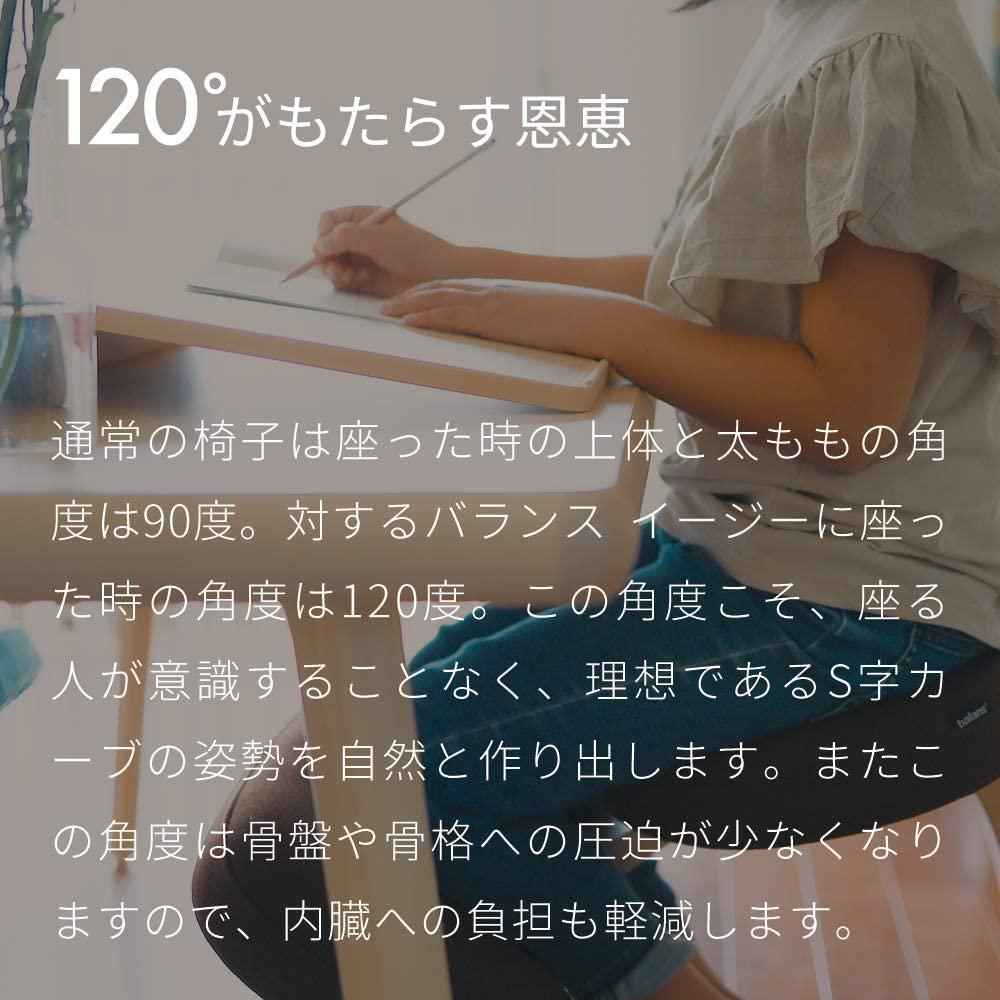 Sakamoto house(サカモトハウス) バランスチェア・イージーの商品画像4