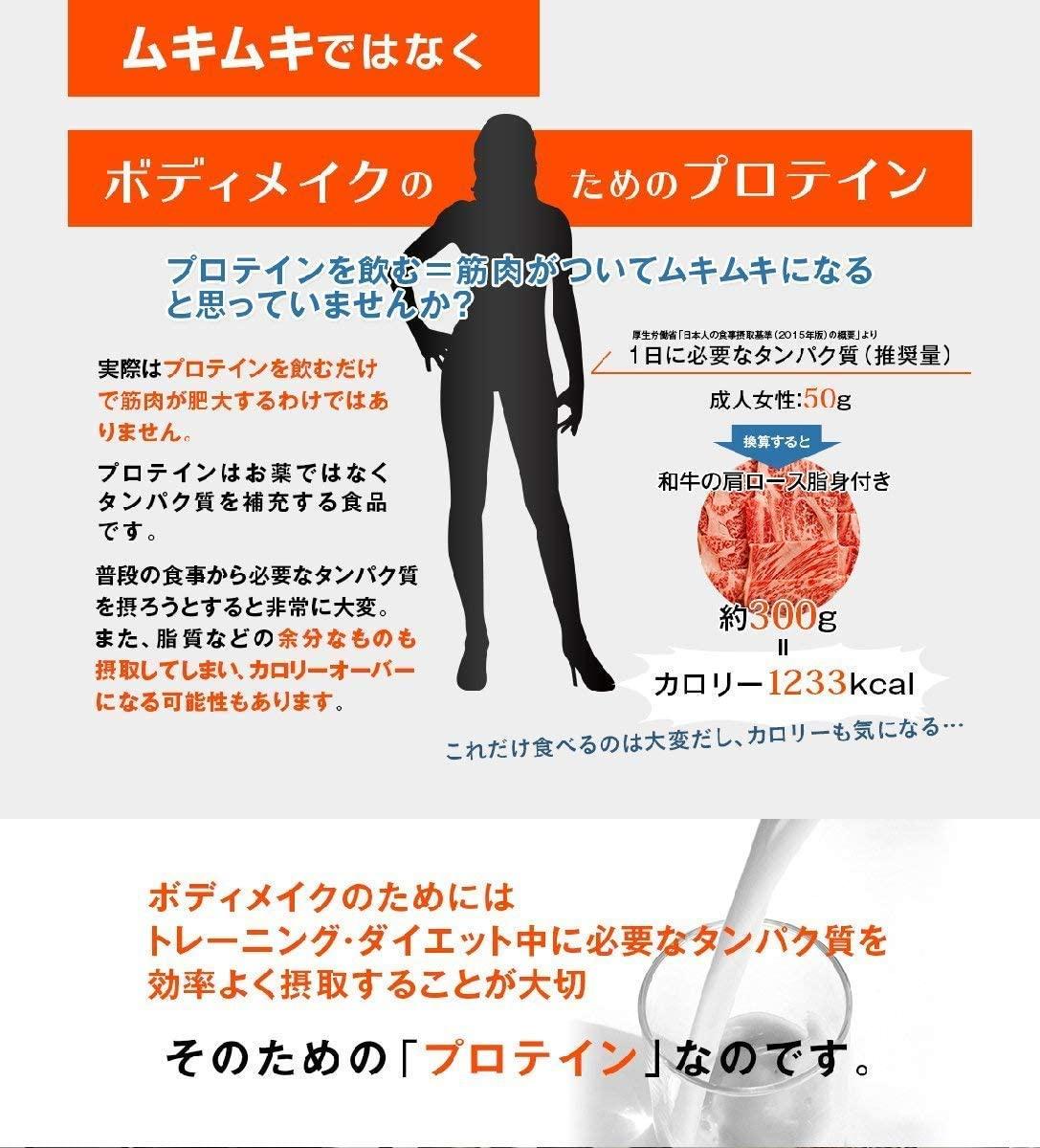 FINE(ファイン) AYA'sセレクション プロテイン ダイエット スムージーの商品画像2