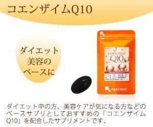 ogaland(オーガランド) コエンザイムQ10の商品画像3