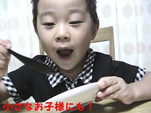 八代目 はりま屋 食べやすいスプーン 大 黒 5本セットの商品画像4