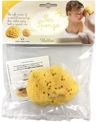 Bellini(ベリーニ)天然海綿スポンジ シルク種 FD7の商品画像