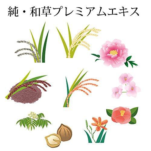 いち髪(ICHIKAMI) いち髪 なめらかスムースケア シャンプー 詰替用2回分の商品画像6