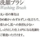 竹宝堂(ちくほうどう)FA-6 洗顔ブラシの商品画像4
