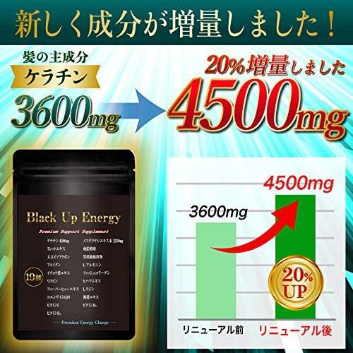 Body Life Change(ボディライフチェンジ) Black Up Energy ノコギリヤシ ケラチン 髪 サプリメント 男性 厳選19素材 30日分の商品画像3
