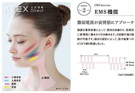 ATEX(アテックス) ルルド フェイスメイクローラーの商品画像6
