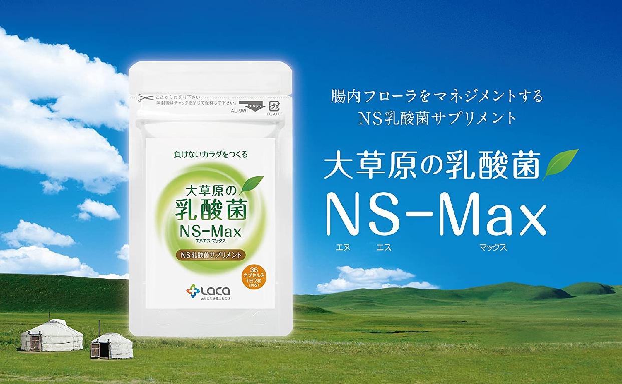 ラクア 大草原の乳酸菌 NS-Max(36粒)の商品画像2
