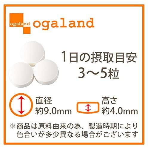 ogaland(オーガランド) L-オルニチンの商品画像2