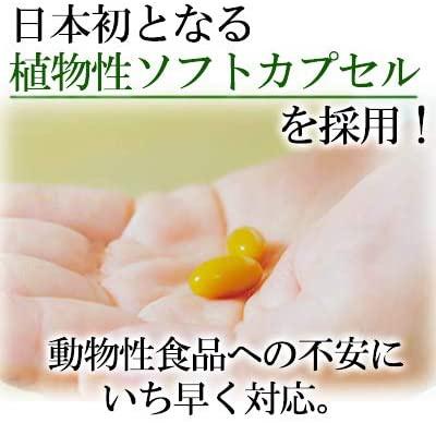 健康家族 機能性表示食品 伝統にんにく卵黄の商品画像5