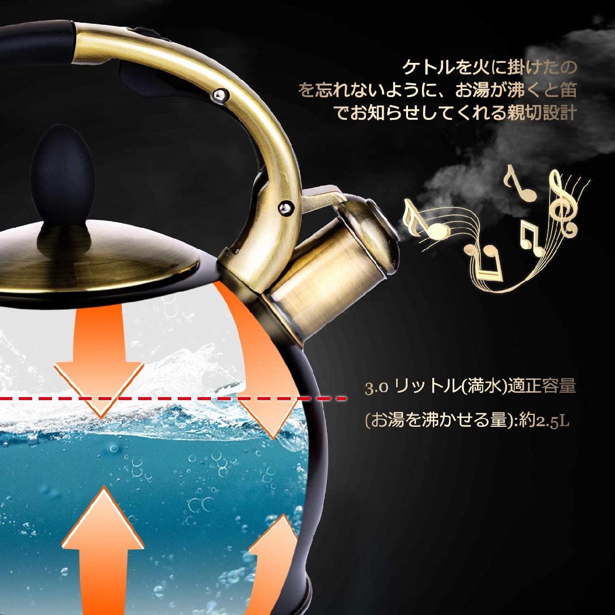 SUSTEAS(サスティーズ) 笛吹きケトル 2.5Lの商品画像3