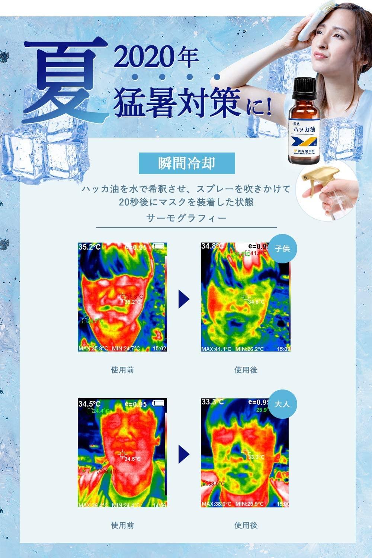 武内製薬(タケウチセイヤク) ハッカ油の商品画像2