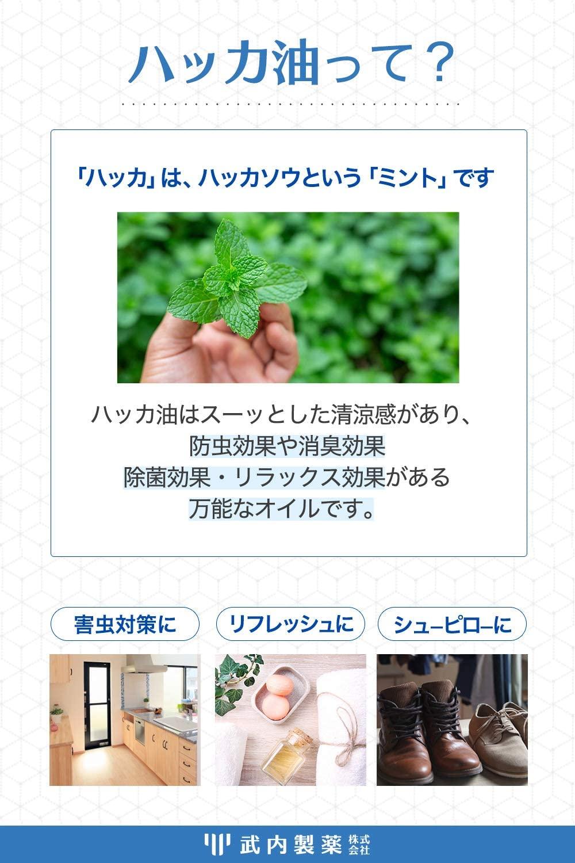 武内製薬(タケウチセイヤク) ハッカ油の商品画像3