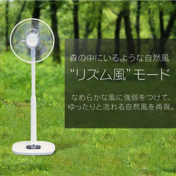 IRIS OHYAMA(アイリスオーヤマ) リモコン式リビング扇 DCモーター式 ハイタイプ LFD-306Hの商品画像8