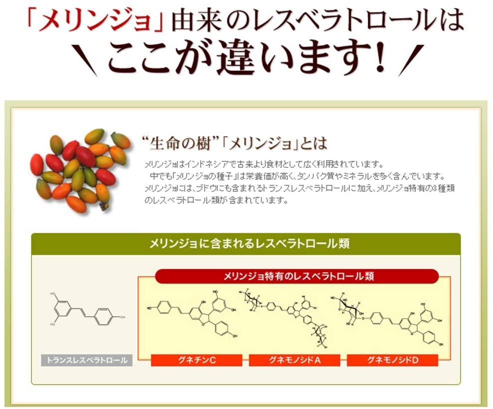 山田養蜂場(YAMADA BEE FARM) レスベラトロール プラスの商品画像7