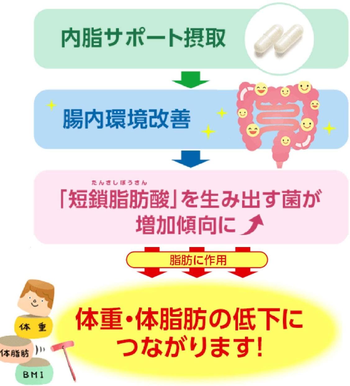 FANCL(ファンケル) 内脂サポートの商品画像9