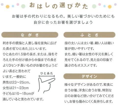 tetoca(テトカ) 栗 23cm 111254 ナチュラルの商品画像5