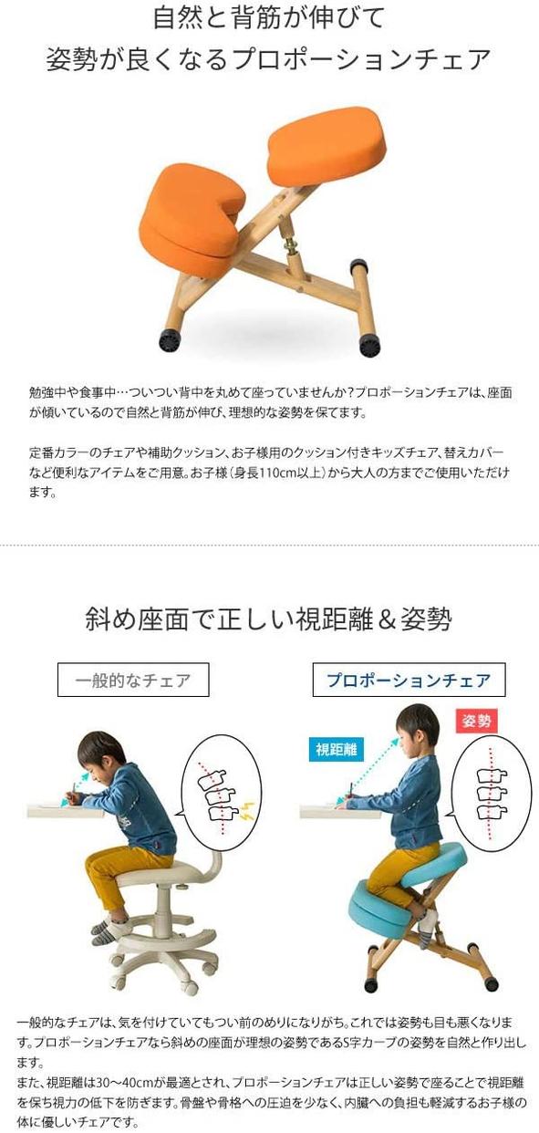 MIYATAKE(ミヤタケ) プロポーションチェアキッズ CH-889CKの商品画像3