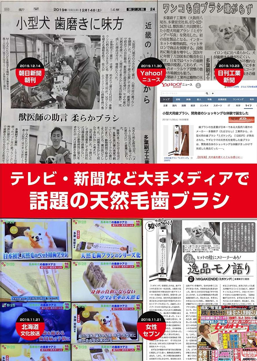 MIGAKENDE(ミガケンデ) 柔らかい天然毛歯ブラシの商品画像7