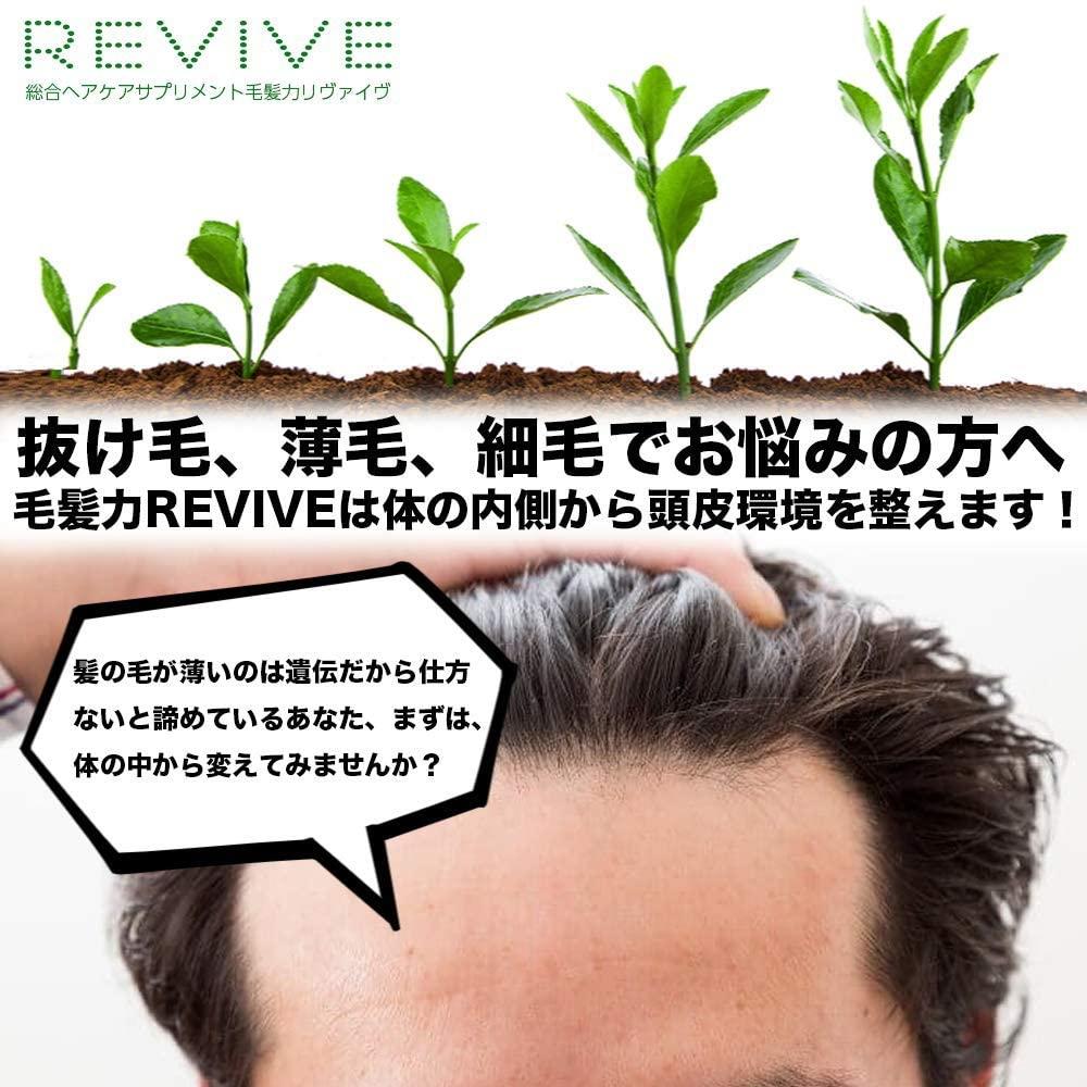 Revive(リヴァイブ) ノコギリヤシサプリメントの商品画像2
