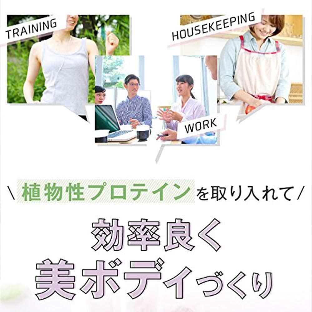 FINE(ファイン) AYA'sセレクション プロテイン ダイエット スムージーの商品画像3