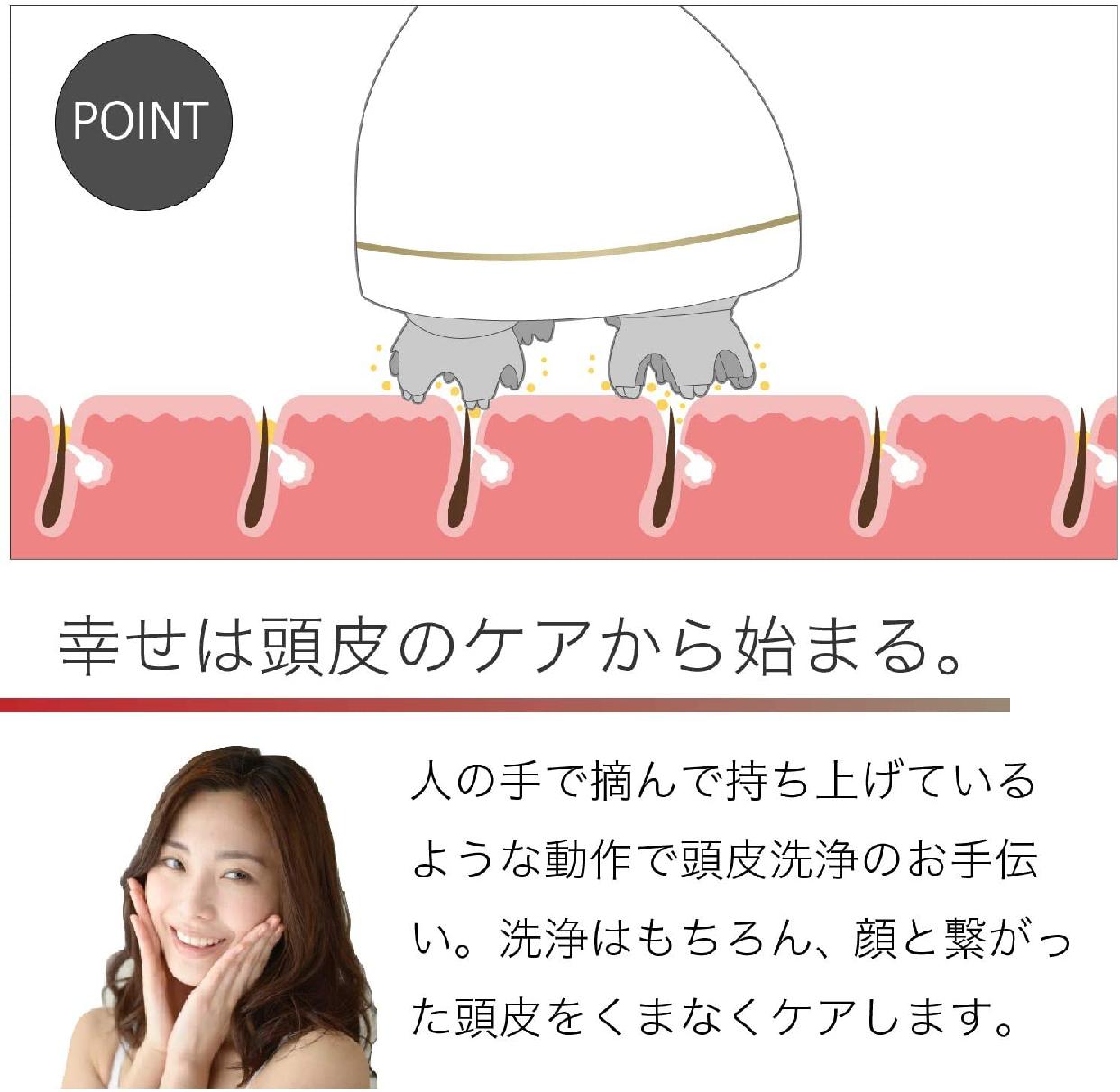 WorldLI Home Product(ワールドエルアイホームプロダクト)頭皮マッサージ器 KAS-1の商品画像4