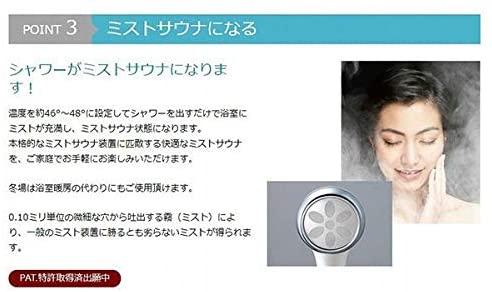 JAPAN STAR(ジャパンスター) ナノフェミラスの商品画像5