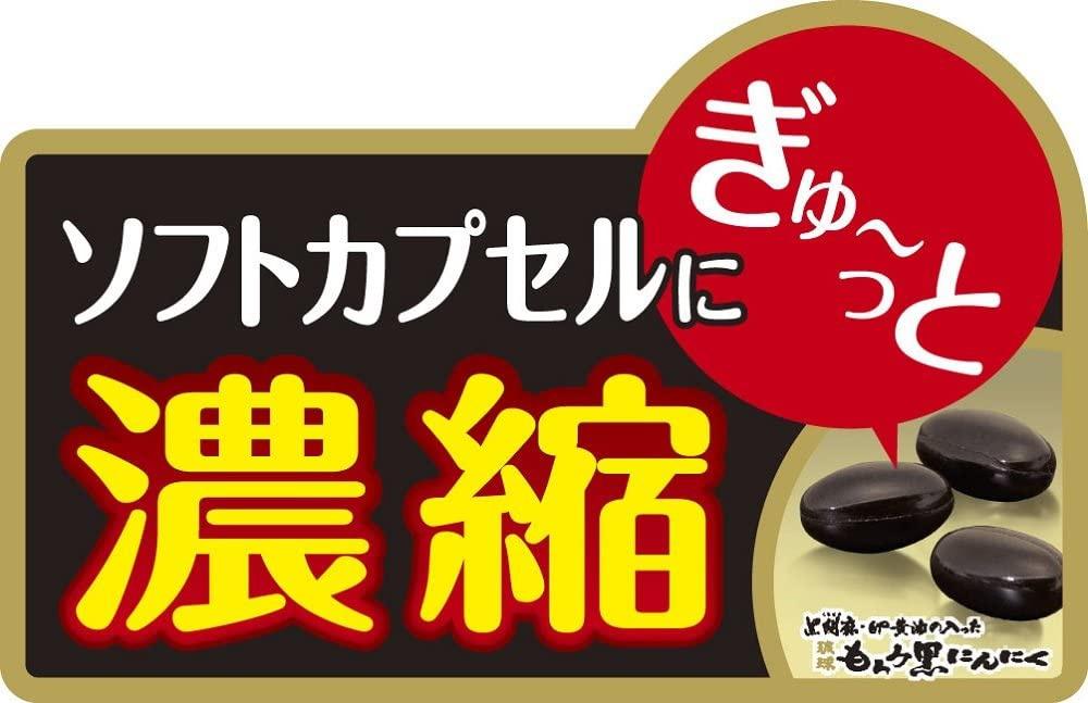 井藤漢方製薬 黒胡麻・卵黄油の入った琉球もろみ黒にんにくの商品画像6