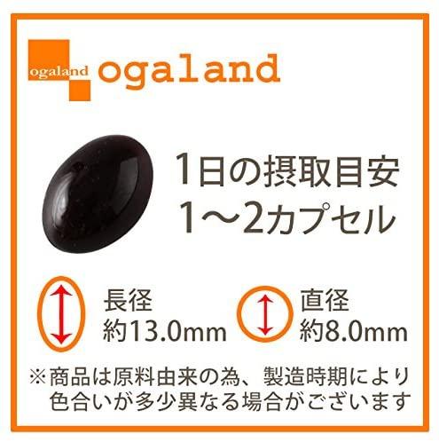 ogaland(オーガランド) 黒にんにく卵黄の商品画像2