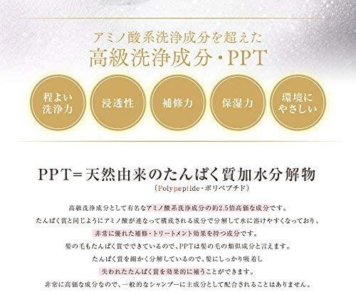 aina beaute(アイナボーテ)PPTコラーゲン&シルクシャンプー脂性肌の商品画像5