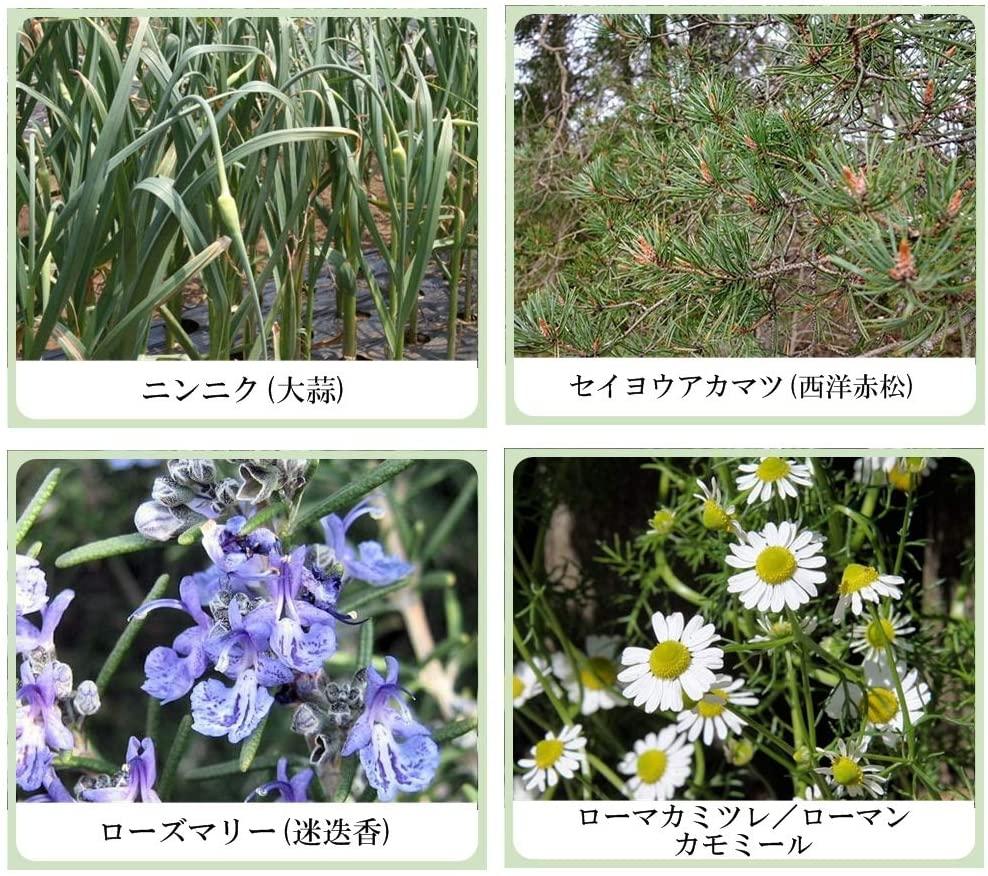 美健漢方研究所 草根木花 ハーブモイストシャンプー No.2 シルバーヘア用の商品画像5
