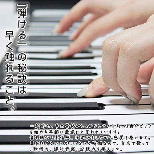 SMALY(スマリー) ロールアップピアノ 49鍵盤 SMALY-PIANO-49の商品画像2